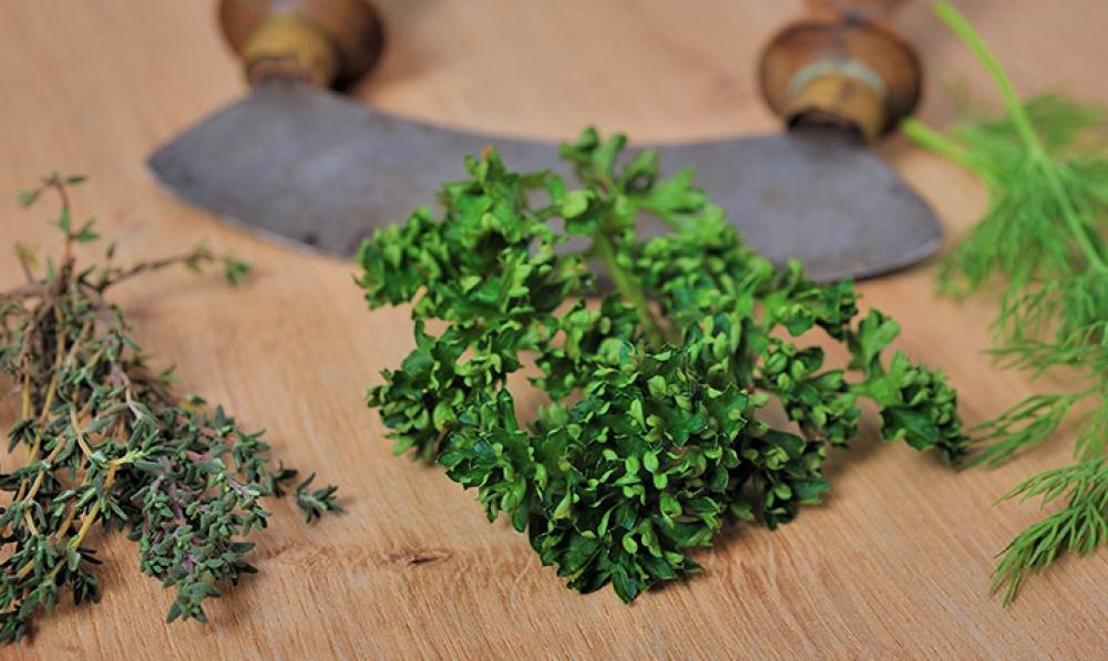 küchenabverkauf - blog details - Frische Kräuter In Der Küche